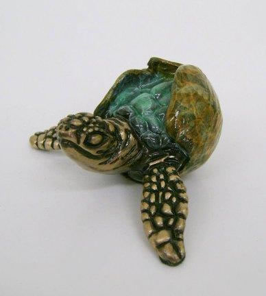 Turtle, Itsy